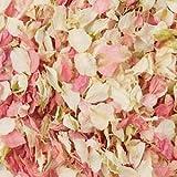 Naturale biodegradabile Delphinium-Coriandoli per matrimonio, 26 colori disponibili, Cream & Pink, 1 l