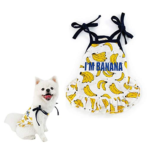 (Petea Pet Clothes Cute Summer Fruit Dog Cat T-Shirt Puppy Clothes Dog Skirt Dress Clothes for Dogs and Cats (Dress, L))