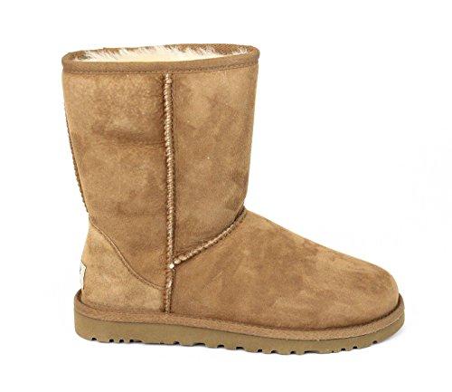 ugg-australia-womens-classic-short-boots-footwear-chestnut-size-8