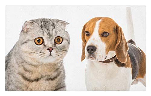 Lunarable Beagle Doormat, Breed Cat Dog Friendly Pets Domestic Animals and Purebred Creatures, Decorative Polyester Floor Mat with Non-Skid Backing, 30 W X 18 L Inches, Amber Dust and Dark Cocoa