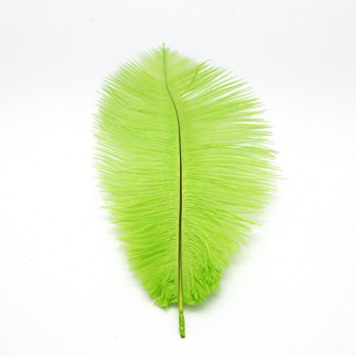 WAKEACE Ostrich Feathers 10-12inch/25-30CM 20pieces Wholesale Discount DIY Wedding Decoration Clothing Accessories