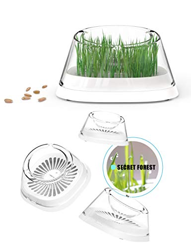 - Moboli Secret Forest Cat Bowls, New Concept Innovative Design Pet's Feeder, Be From The Nature Return To The Nature, An Great Perfect Dining Table To Help Cat Vent Hairball, Give Your Pet More Love