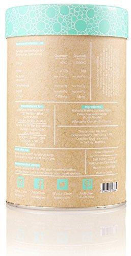 Vida Glow 100% Natural Marine Collagen Original Blend (BULK, 270g Loose Powder, 90 Servings) by Vida Glow (Image #1)'