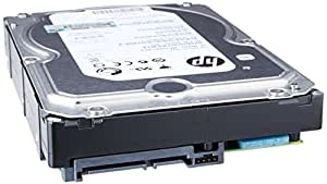 HP 507772-B21 - Disco duro interno de 1 TB