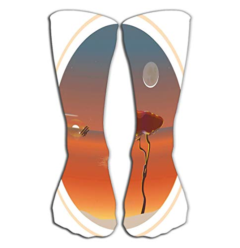 YILINGER Tree Dream Catcher Wind Against Backdrop Setting Sun Rising Moon airpl Compression Socks 19.7