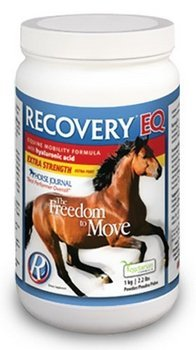 Recovery EQ with Hyaluronic Acid, 2.2 lbs (1 Kg) by Biomedica Nutraceutical Medicine Company