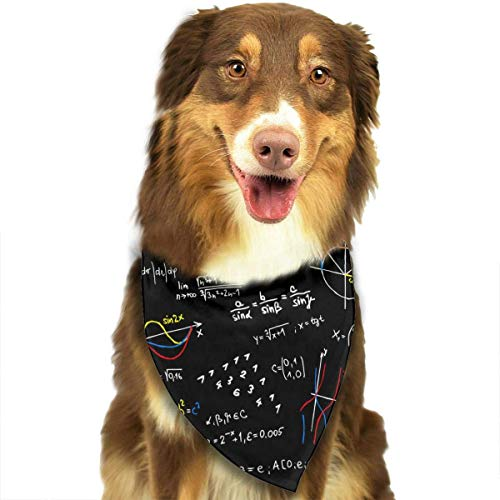 DMFS Math Lesson Dog Bandanas - Washable and Reversible Triangle Cotton Dog Bibs Scarf Assortment Suitable for Puppy Small and Medium -