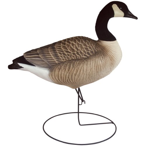 Real Geese Pro Series II Canada Goose' Decoys 12 Pack