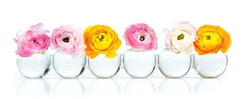 Caterpillar Flower Vase
