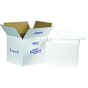 d3c57822ec32 Amazon.com: Boxes Fast BF238C Insulated Shipping Box with Foam ...