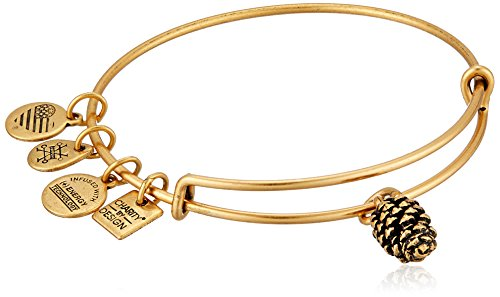 Alex and Ani Charity by Design, Pinecone EWB Rafaelian Gold Bangle Bracelet