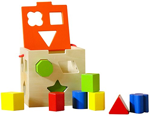 Classic Wooden Shape Sorter Toy w/Hinged Lid & Carrying Strap - 10 Color Solid Wood Geometric Shape Puzzle Pieces - Developmental Toy for Preschool Toddlers 1 2 & 3 Year Old Boys & Girls Childrens Developmental Toys