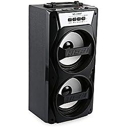 GB-Tech MS - 148BT Portable High Power Output FM Radio Wireless Bluetooth Speaker Black