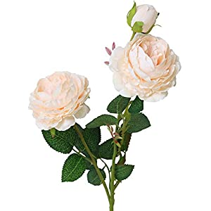 """Lemax 24"""" Long Artificial Peony Silk Peony Bouquets Fake Flowers Wedding Home Decoration,Pack of 3 4"""