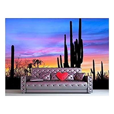 Elegant Handicraft, Saguaro Silhouetten in Sonoran Desert Sunset Lit Sky, With Expert Quality