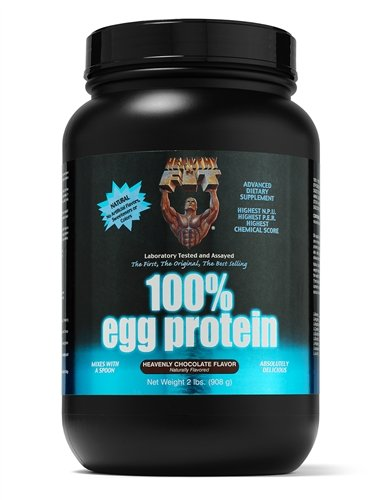 Saine 'N Fit 100% Egg Protein - £ 2 Container, Natural-Unflavored
