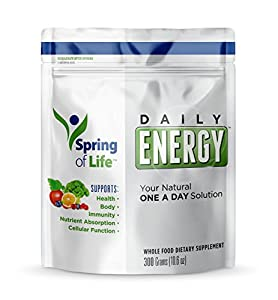 Spring of Life - Daily Energy - 30 Servings - Natural One A Day Superfood Solution, Whole Food Dietary Supplement, 300 grams