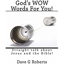 God's WOW Words For You: Straight Talk about Jesus Christ and the Bible