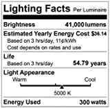 EverWatt 1000W Metal-Halide Equivalent