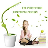 Greensha Flexiable Neck USB Desk Lamp with Rechargeable USB Cable,3 Levels of Dimmable Reading Table Lamp and Cute Plant Pen Holder for Reading/Decorating/Lighting Review