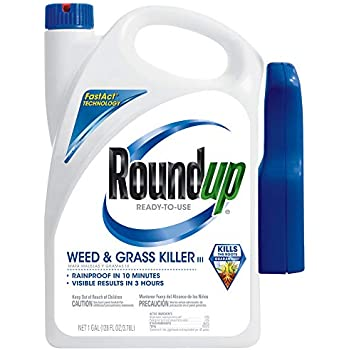 Amazon.com : Roundup 5003240 Weed and Grass Killer III