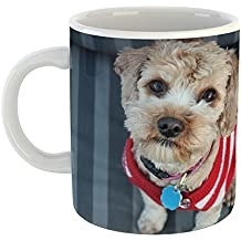 Westlake - Coffee Cup Mug - Morkie Dog - Modern Picture Photography Artwork Home Office Birthday Gift - 11oz (69m 644)