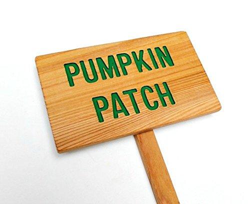 PUMPKIN PATCH Sign, Garden Marker, Yard Art, Outdoor Sign, Pumpkin Sign, Farm Sign, Vegetable Marker, Personalized Sign, Custom Marker, Halloween (Pumpkin Art)