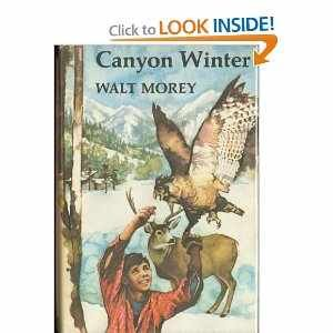Canyon Winter