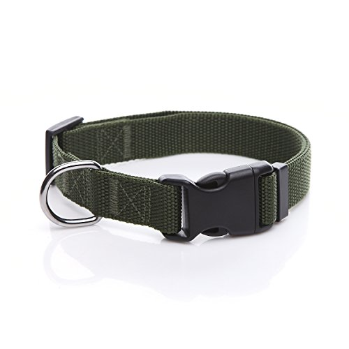 (TAIDA Durable Adjustable Nylon Dog Collar, 1 Inch Wide, for Large Medium Dogs (Green))