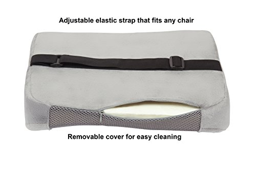 Comfilife Lumbar Support Back Pillow Office Chair And Car