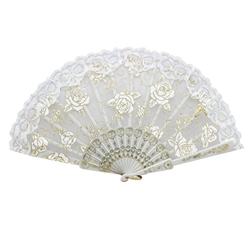 Froomer Lace Folding Hand Held Fans Tulle Summer Wedding Birthday Party ()