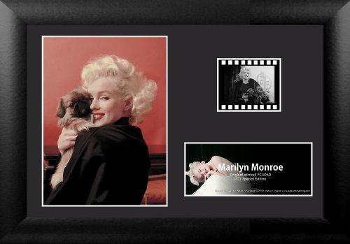 Trend Setters Ltd Marilyn Monroe S3 MGC Minicell Film Cell ()