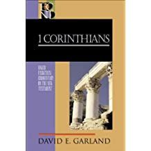1 Corinthians (Baker Exegetical Commentary on the New Testament) (English Edition)