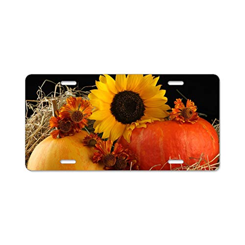 SUJQNGC Best Design Cool Halloween Pumpkin Metal License Plate for Car (New) 12
