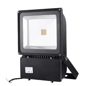 100 Watt LED Spotlight Flood Light Garden Outdoor