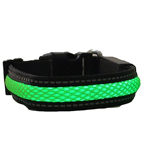 Green Jaguar Mesh Led Light Dog Collar Rechargeable (Large, Green)