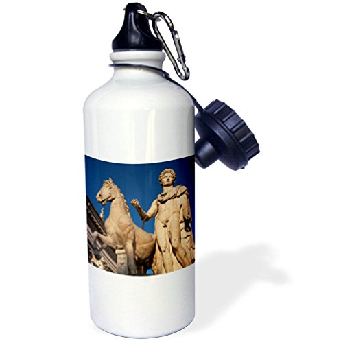 3dRose wb_257746_1 Dioscuri Castor Statue, Capitoline Hill, Rome, Italy Water Bottle by 3dRose