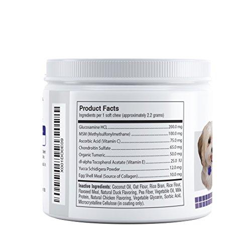 Best Glucosamine Chondroitin Msm For Dogs Vitamin C Amp E