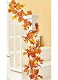 Carol Wright Gifts Autumn Leaves Garland