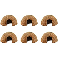 Coconut Hide For Reptiles or Fish (6 Pack)