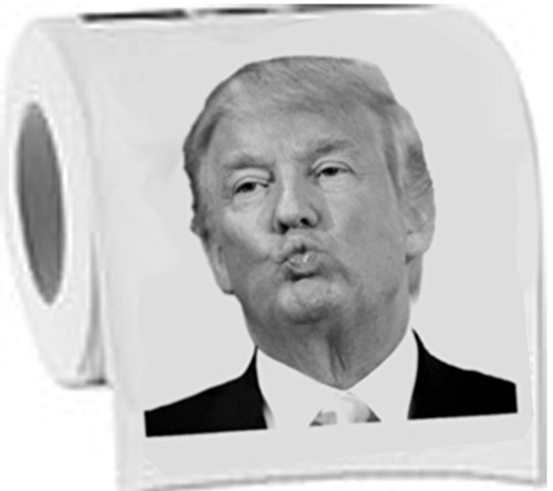 Image result for trump in toilet pictures