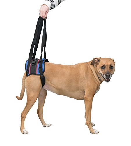 Walkin' Lift Combo Rear Mobility Harness