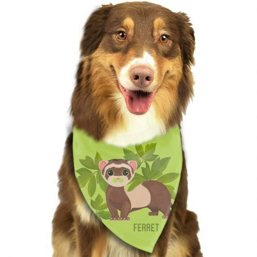 Cecil Beard Dog Bandanas - Washable and Reversible Triangle Cotton Puppy Bibs Scarf Ferret Animal Assortment for Small and Medium Pet