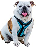 Bulldog Grade No Pull Dog Harness - Reflective Vest Harnesses with Handle Designed for French Bulldogs and English Bulldogs