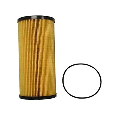 Complete Tractor FF8413 Fuel Filter, Bl: Garden & Outdoor
