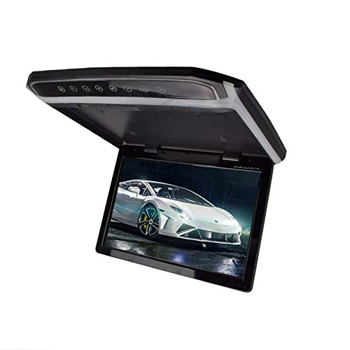 Car HDMI/MP5 Player, 1080P 10.2 Inch Ultra HD Ceiling Car Display Supports Full Format Playback, 2 Channels of Audio and Video Input,1 Output ()