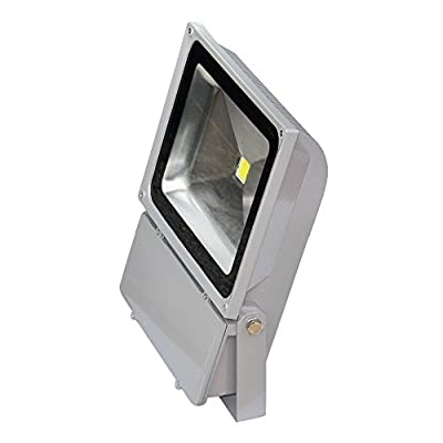 TDLTEK 100W LED Waterpoof Outdoor Security Floodlight 100-240VAC, With Plug, Warm White