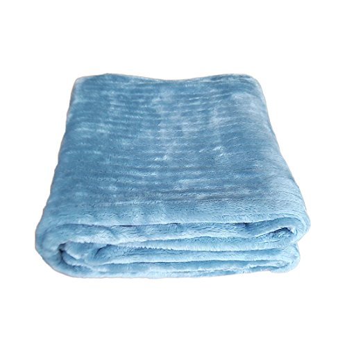 IKOALA Pet Dog Cat Puppy Kitten Soft Blanket Doggy Warm Bed Mat,Thickening of The Grid Mesh Blanket (Light Blue)