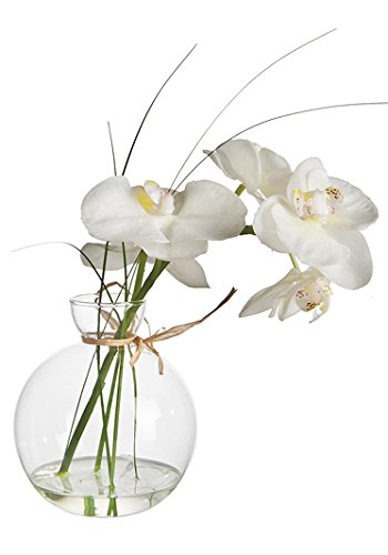 Sia Home Fashion Sia Phalaenopsis Orchid in Water Bowl - White 38cm ...