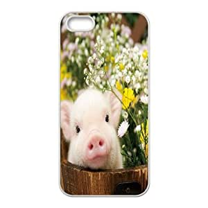Custom pig Iphone 5,5S Phone Case, pig DIY Cell Phone Case for iPhone 5,iPhone 5s at Lzzcase